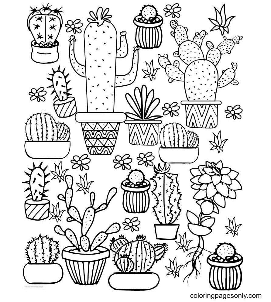 Aesthetics of Cactus Coloring Page