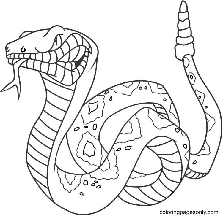 Angry Rattlesnake Coloring Page
