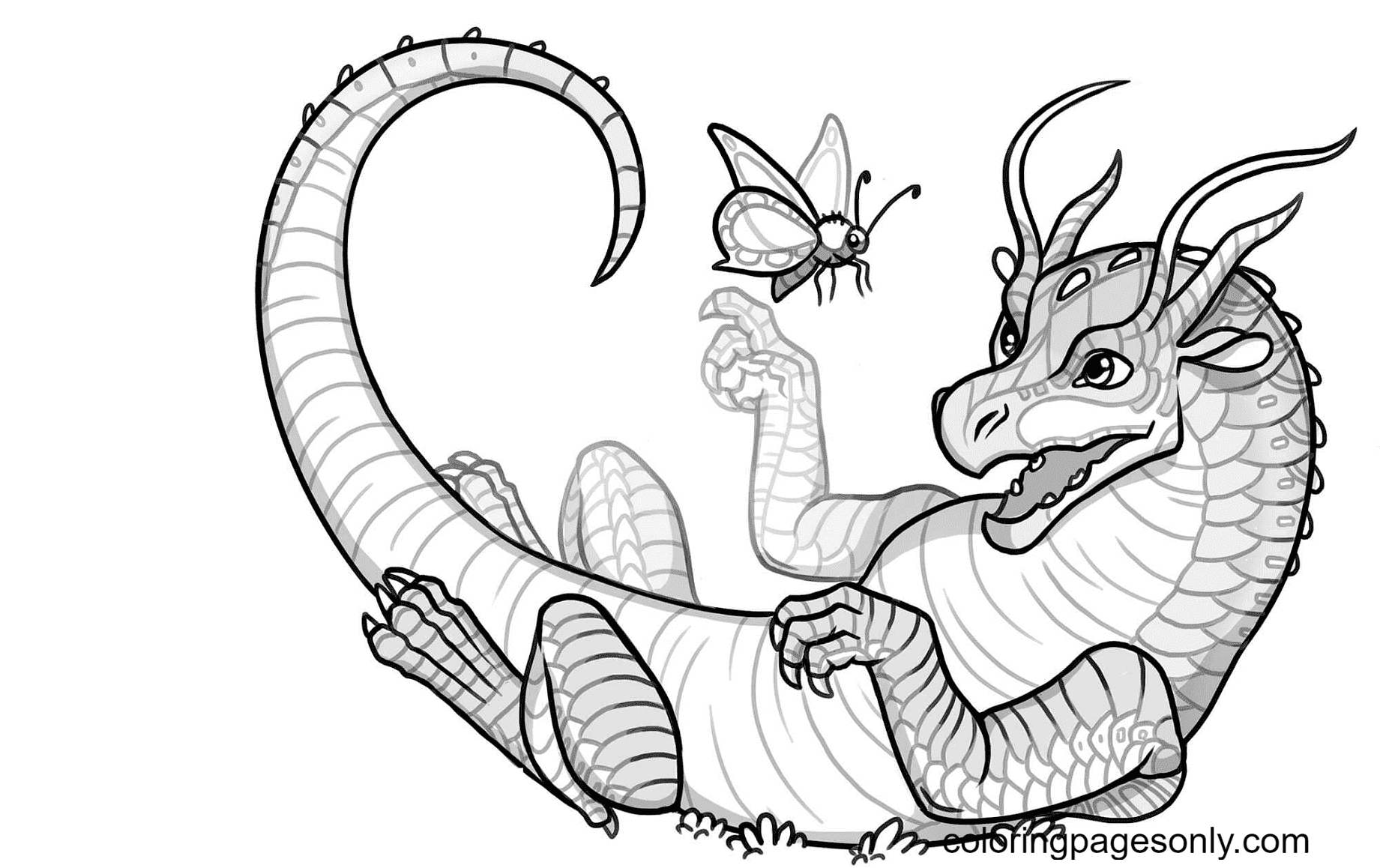 Baby Silkwing Dragon Coloring Page