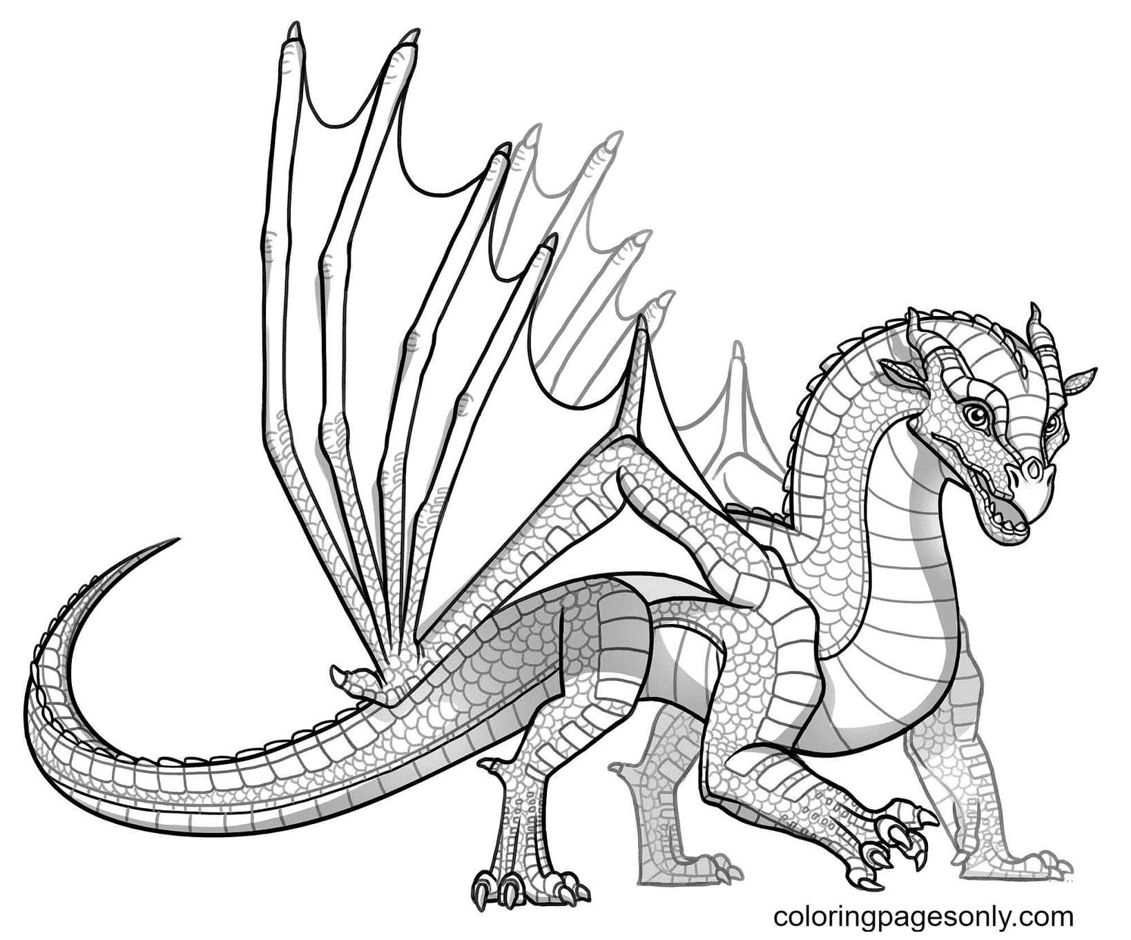 Baby Skywing Dragon Coloring Page