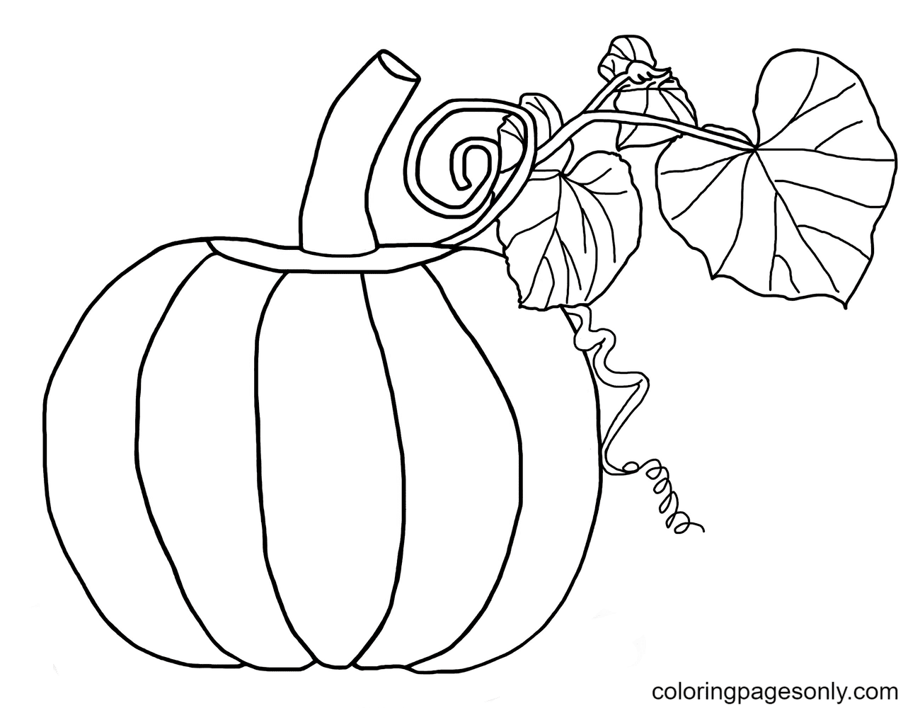 Bearded Pumpkin with Leaves Coloring Page