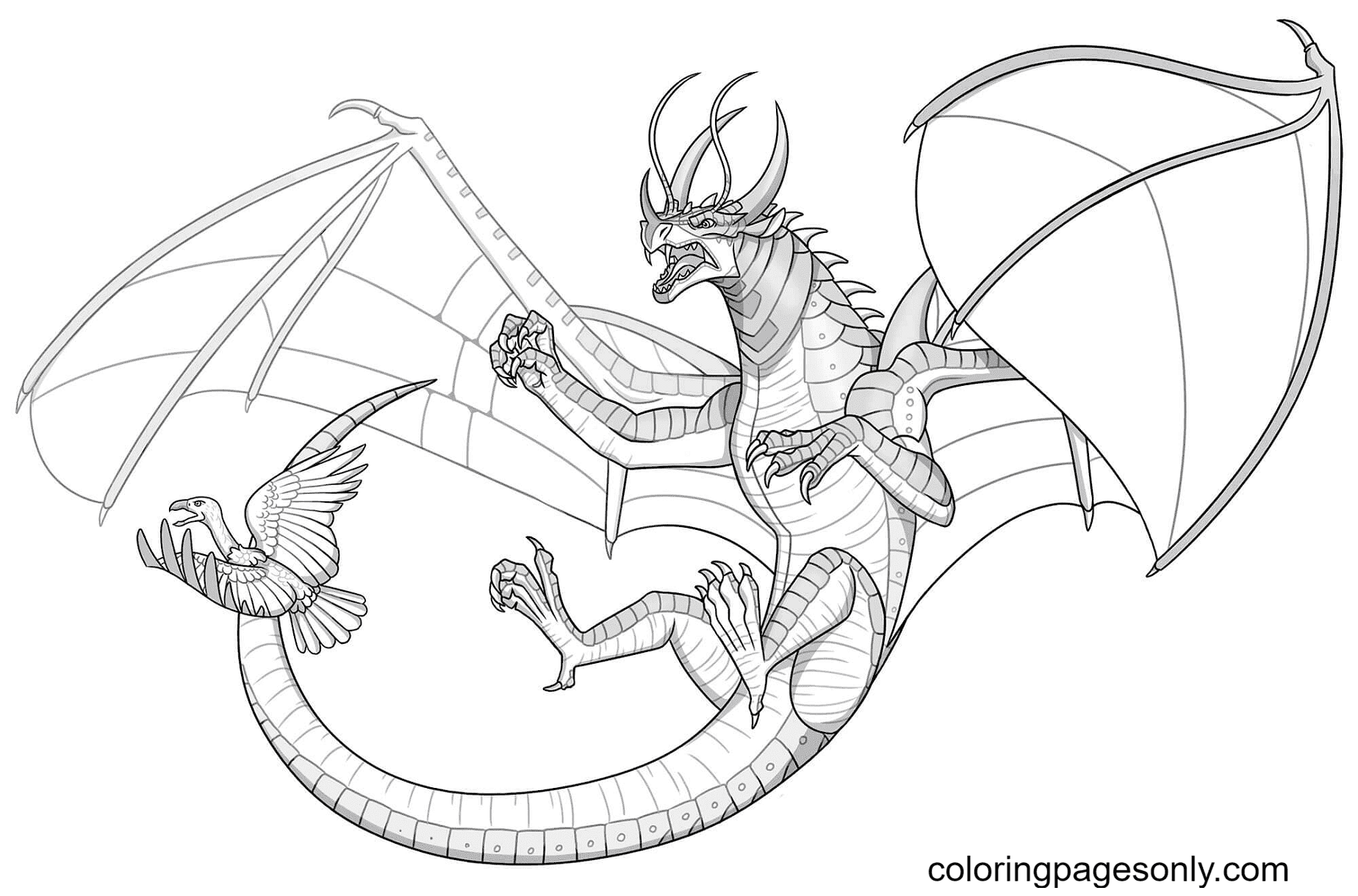 Beetlewing Dragon Coloring Page