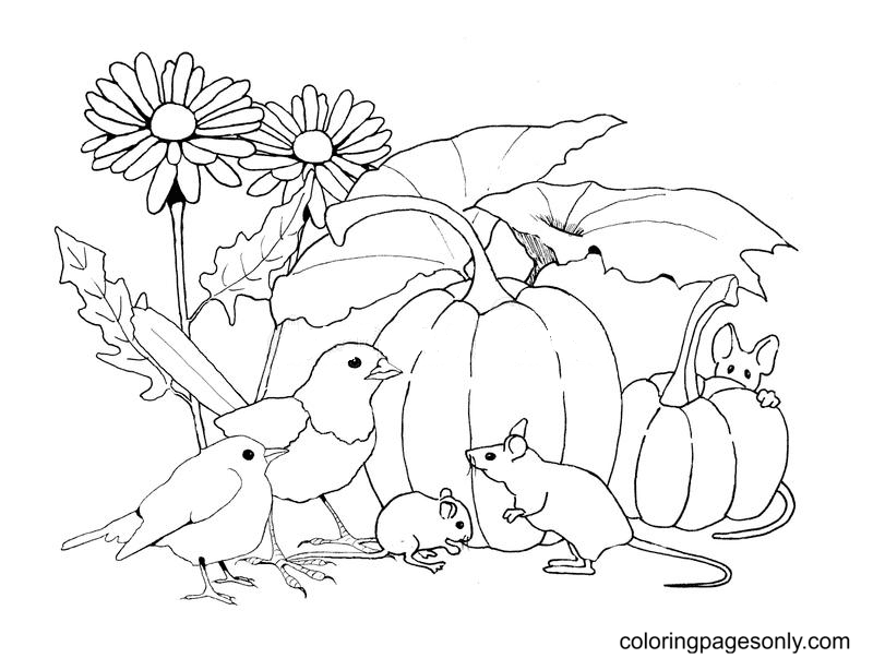 Birds And Mice With Pumpkins And Flowers Coloring Page