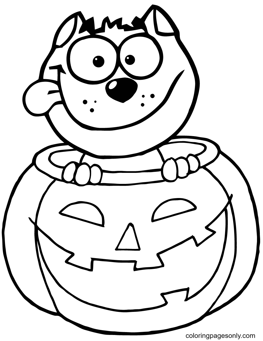 Black Cat Sitting Inside of a Pumpkin Coloring Page