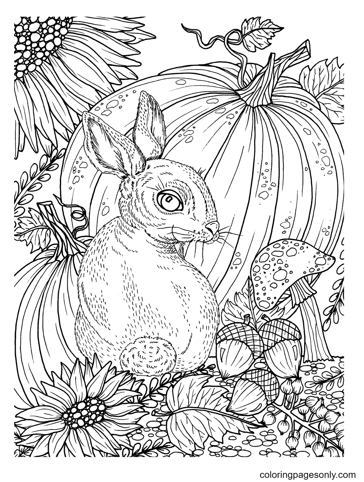 Bunny and Pumpkin Coloring Page