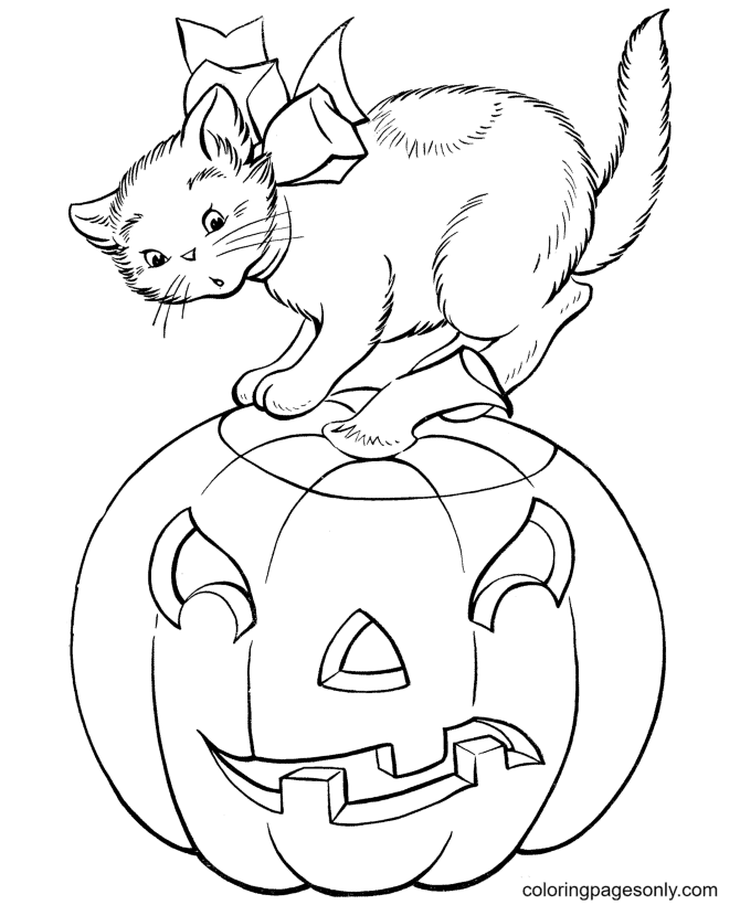 Cat and Evil Halloween Pumpkin Coloring Page