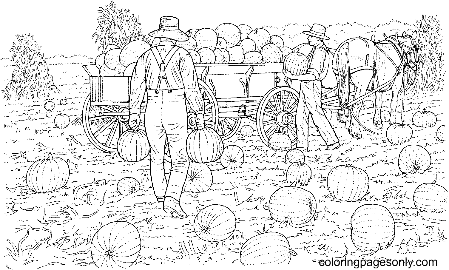 Farmers Gather the Harvest from Pumpkins Field Coloring Page