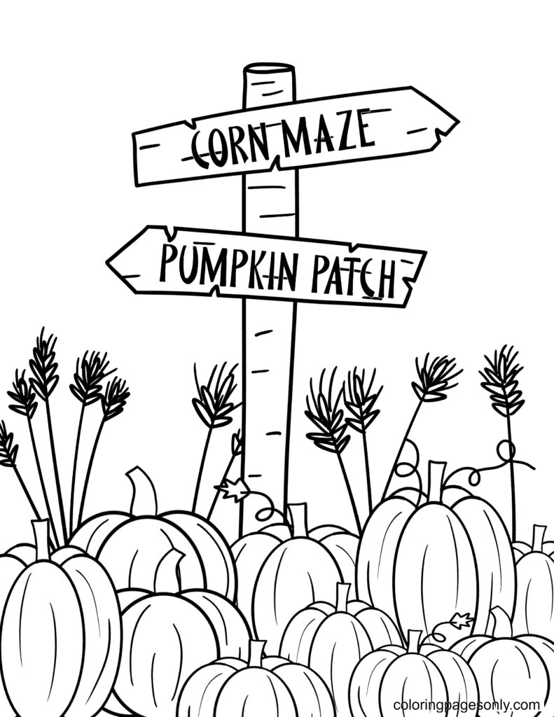 Free Printable Pumpkin Patch Coloring Page