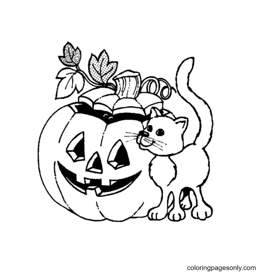 Halloween Pumpkin And Cat Coloring Page