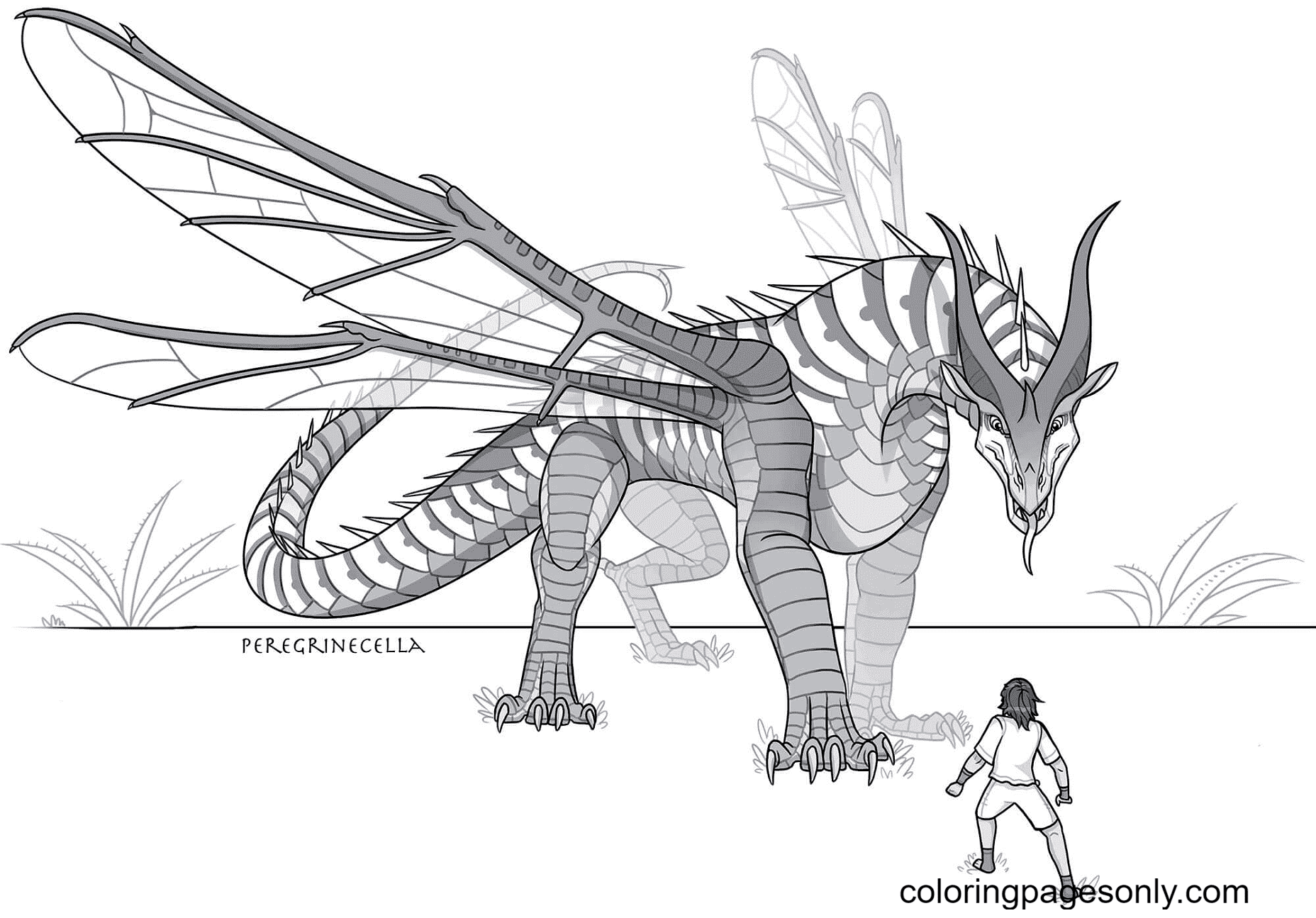 Hivewing Dragon from Wings of Fire Coloring Page