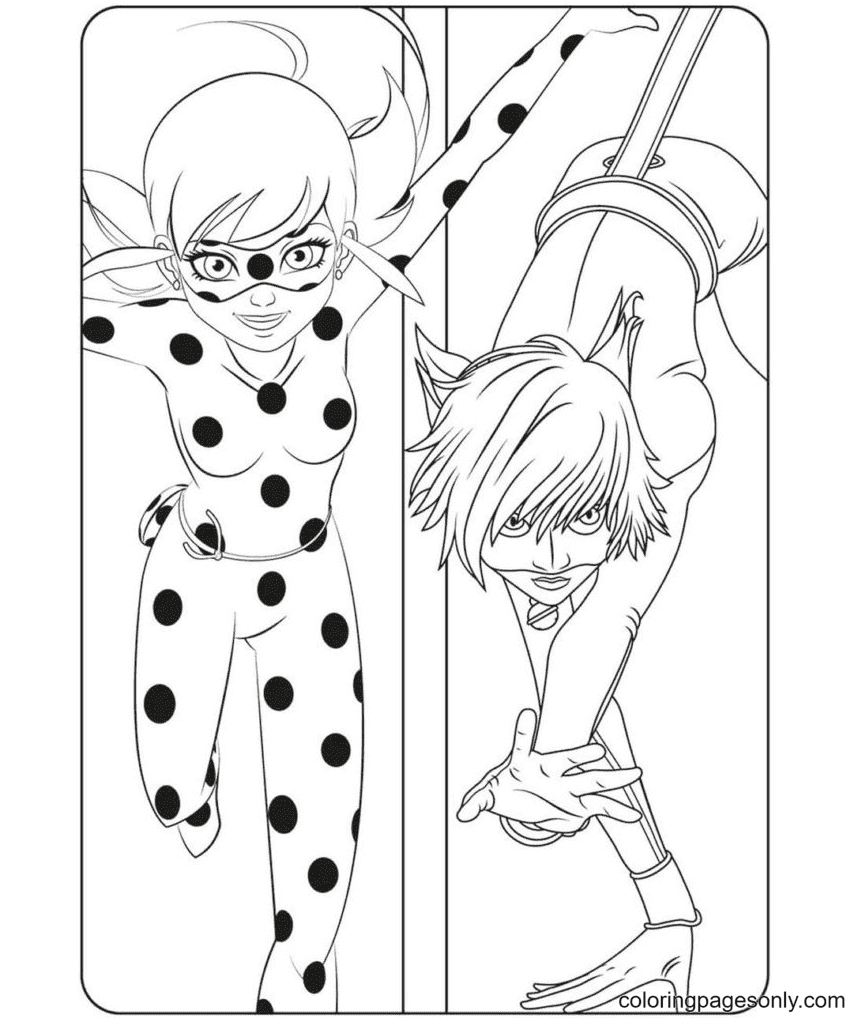 Ladybug with Cat Noir Image Coloring Page
