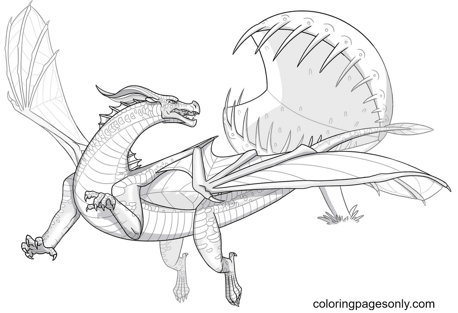 Leafwing Dragon Coloring Page