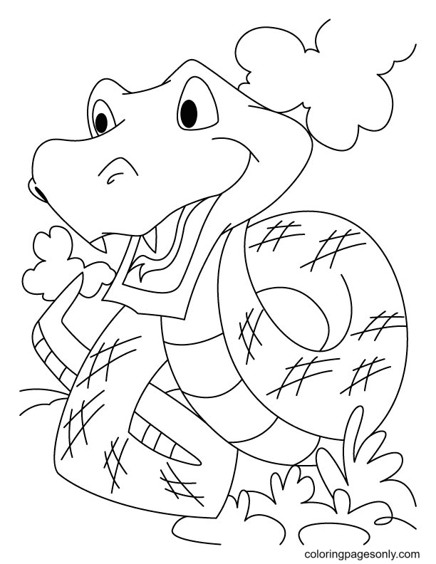 Photos of Snake Coloring Page