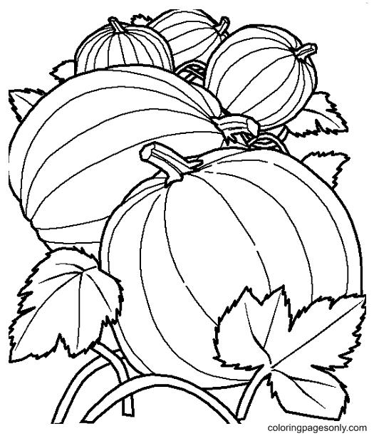 Pumpkin Leaves Free Printable Coloring Page