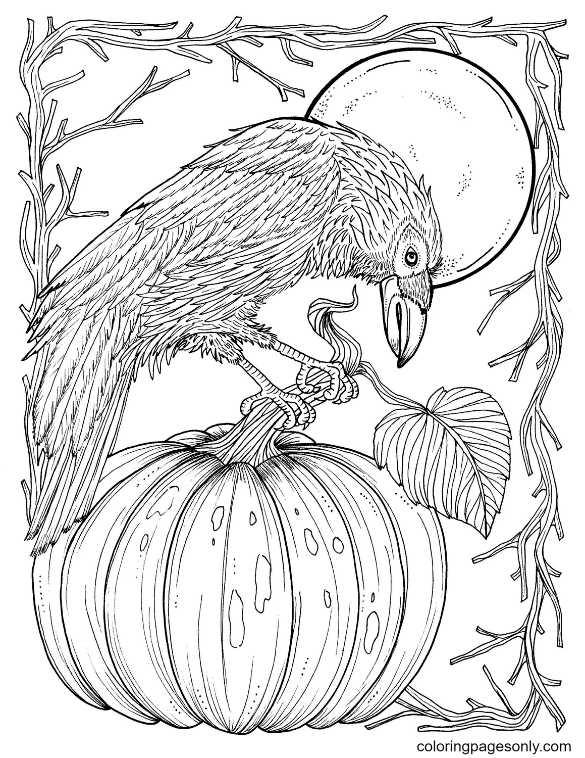 Pumpkin and Crow Coloring Page