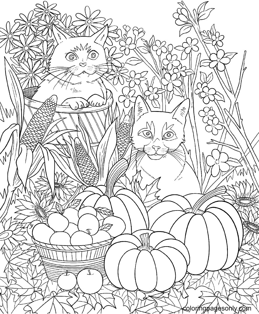 Pumpkins and Two Cats Coloring Page