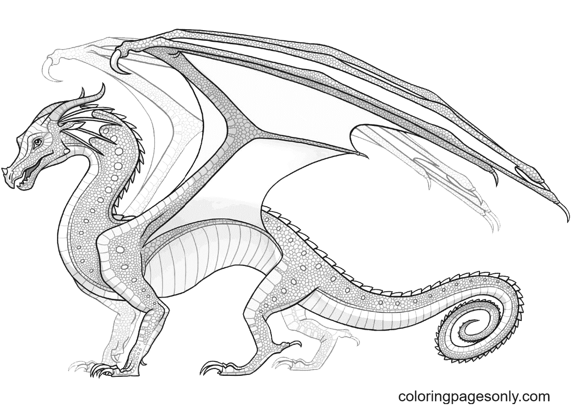 Rainwing Dragon from Wings of Fire Coloring Page