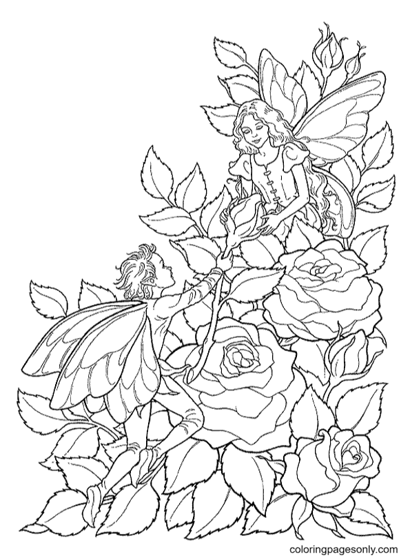 Roses and Fairies Coloring Page