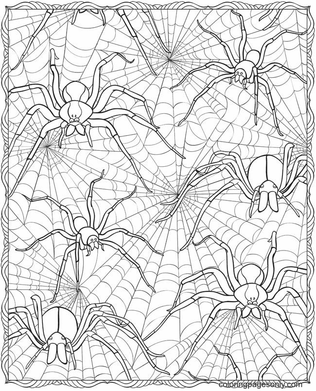 Scary Spiders Coloring Page