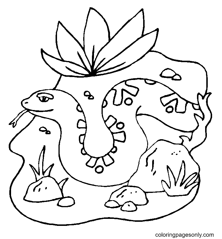 Snake with flower Coloring Page