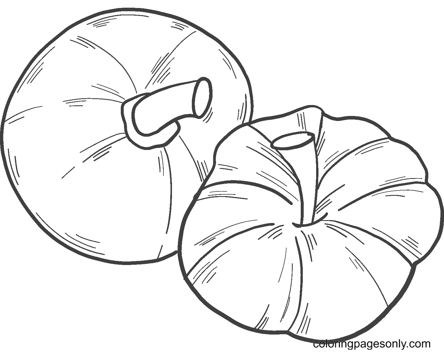 Two Simple Pumpkins Coloring Page