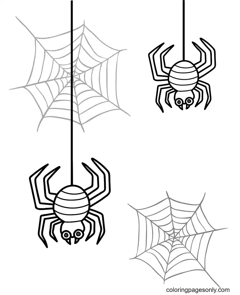 Two Spiders and Spider Web Coloring Page