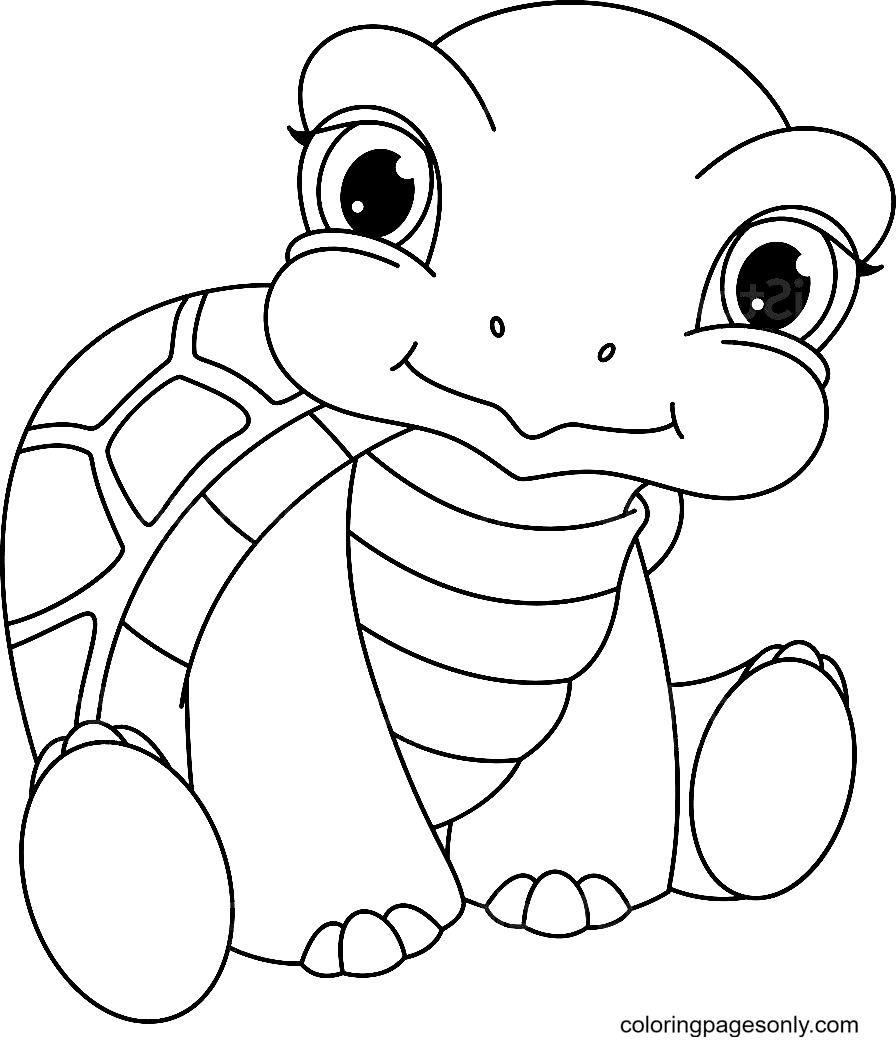 Adorable Baby Turtle Coloring Page