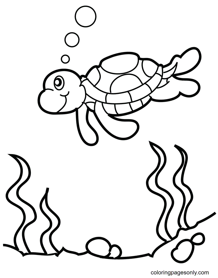 Adorable Tortoise Coloring Page