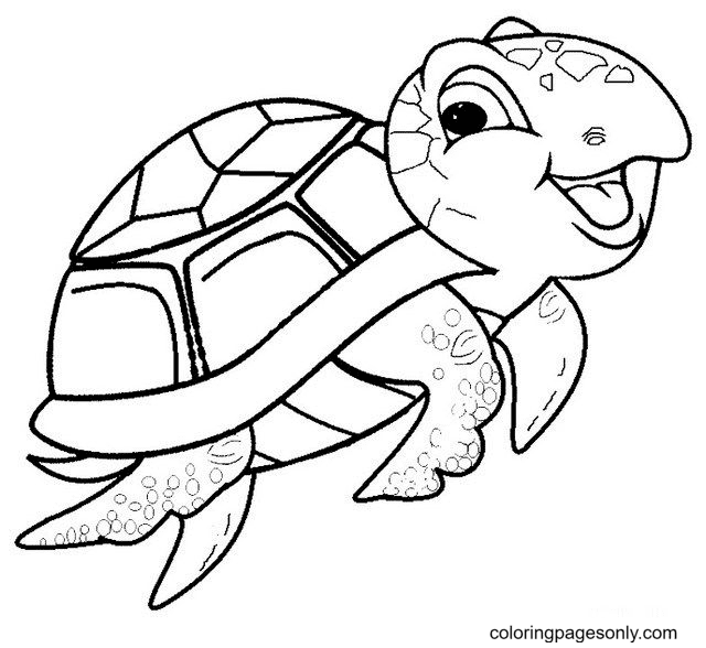 Baby Sea Turtle Coloring Page