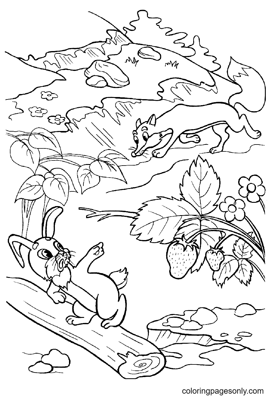 Bunny Runs Away From the Fox Coloring Page