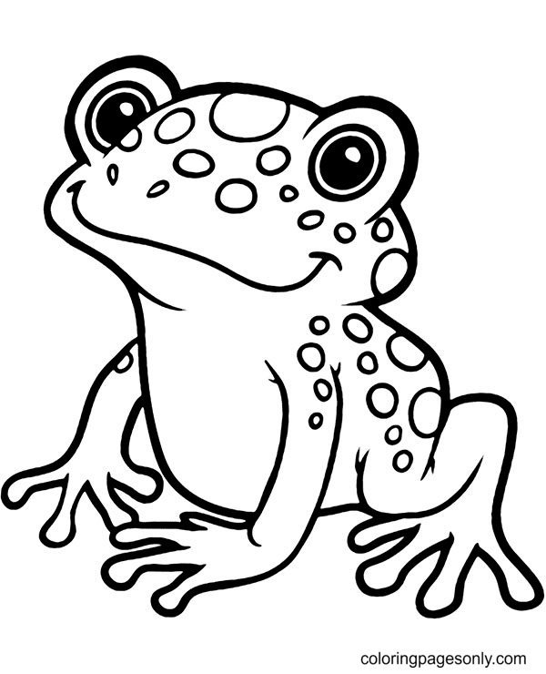 Exotic Frog Coloring Page