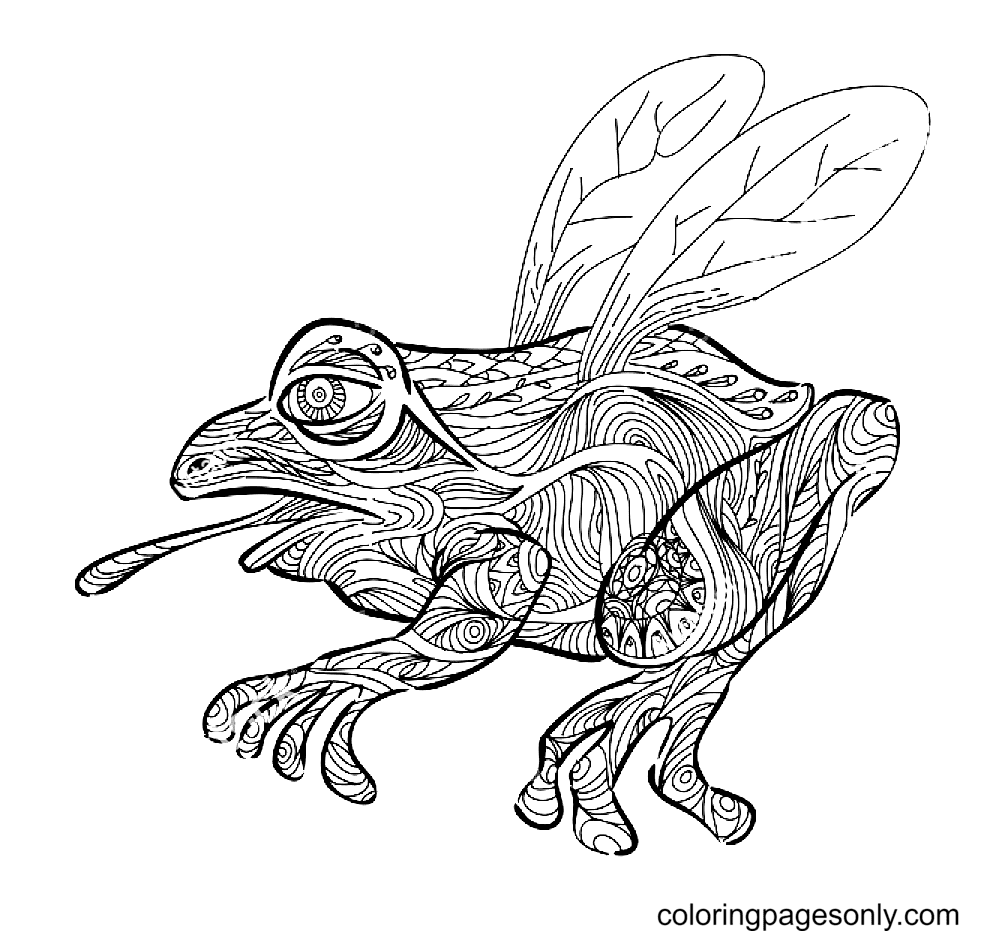 Flying Frog Zentangle Style Coloring Page
