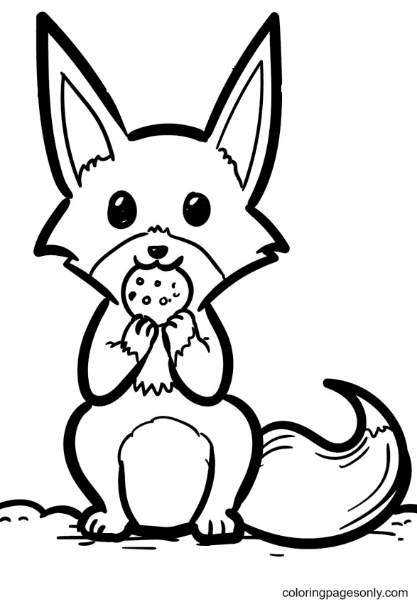 Fox Eats Cookie Coloring Page