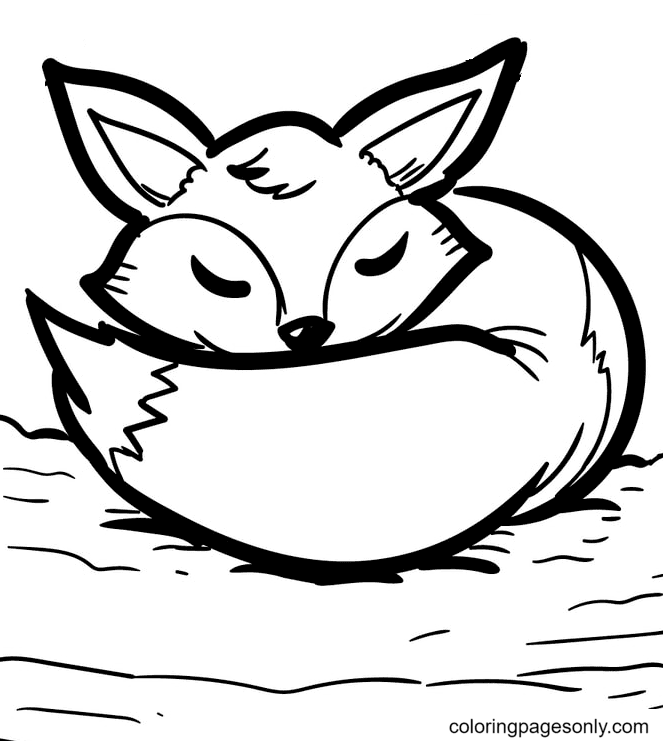 Fox is Sleeping Coloring Page