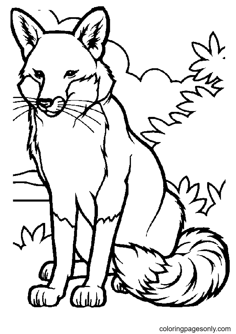 Fox to Print Coloring Page