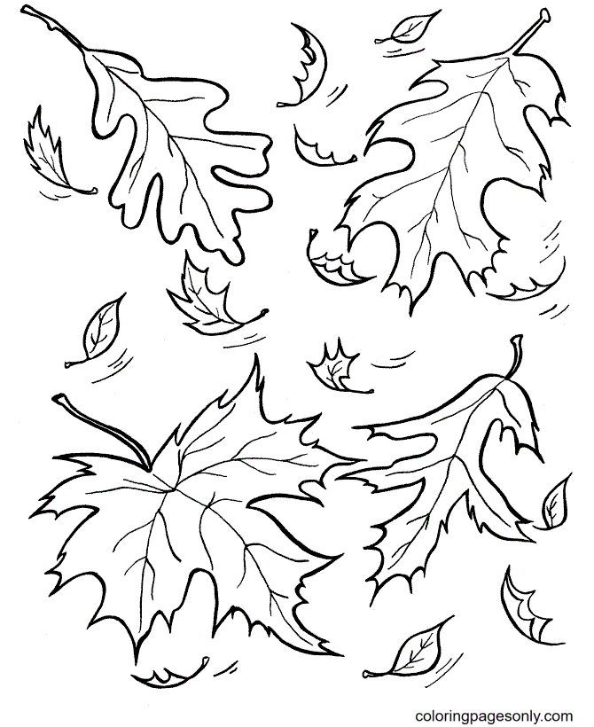 Free Fall Leaves Coloring Page