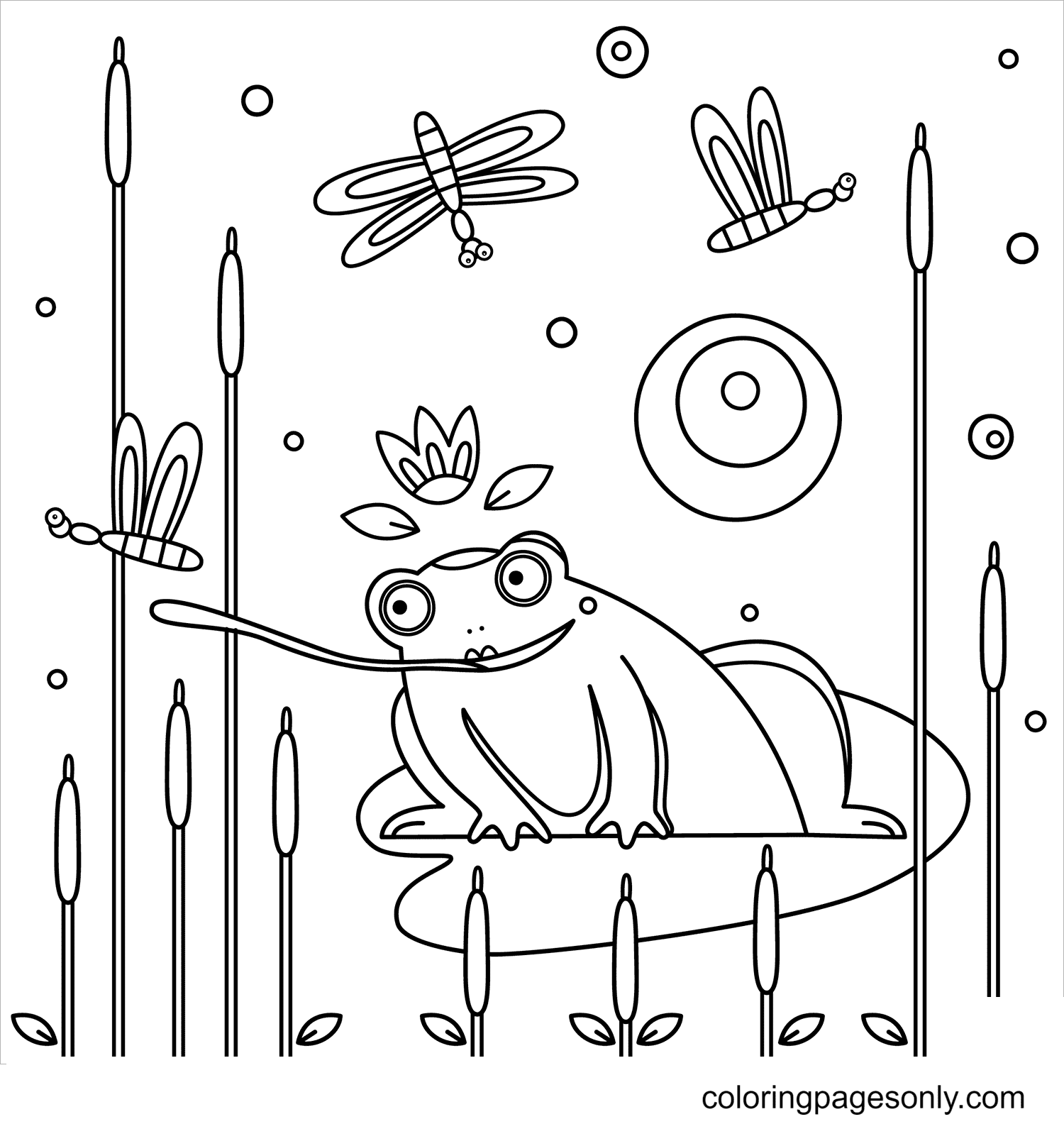 Frog Catches Prey Coloring Page