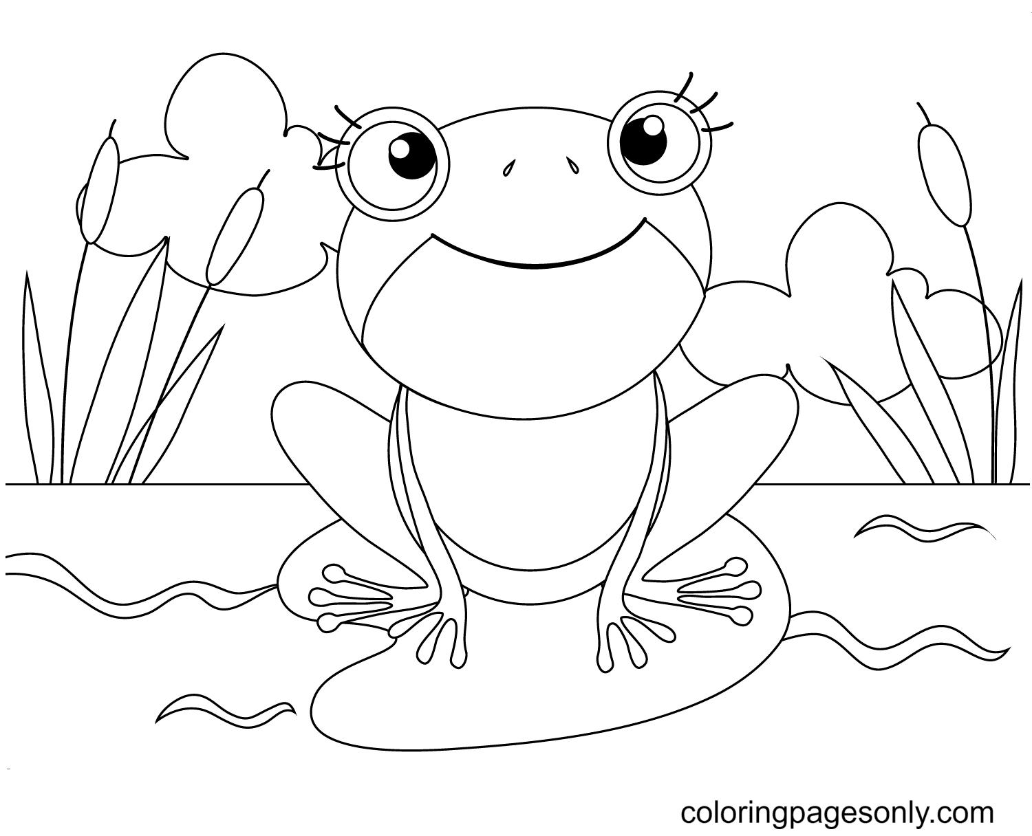 Frog On a Lily Pad Coloring Page