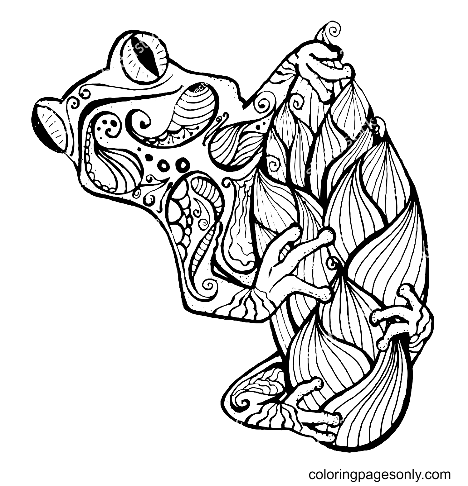 Frog Zentangle Coloring Page