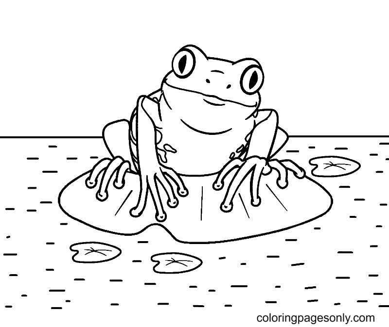 Frog and Lilypads Coloring Page