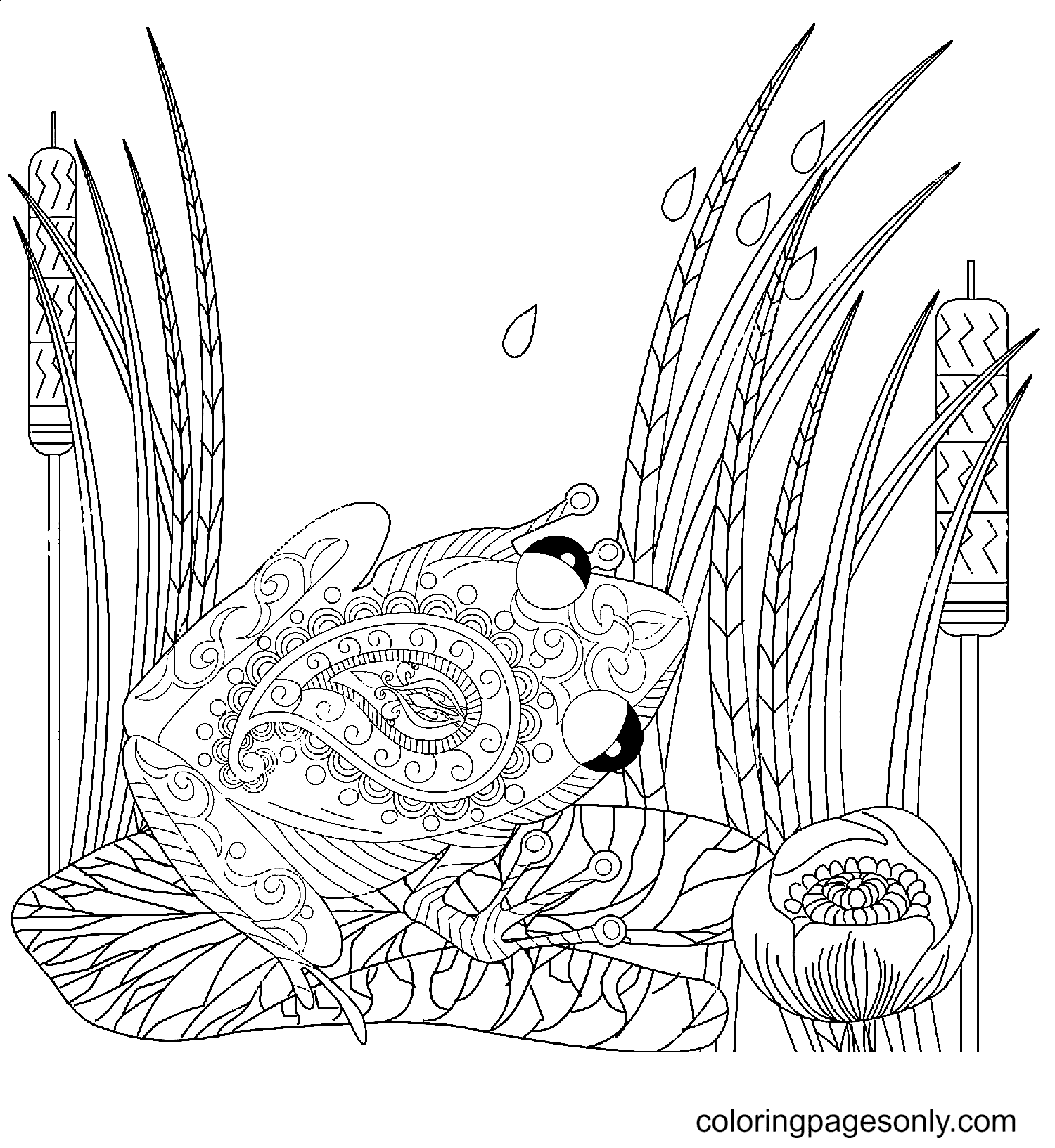 Frog and Lotus, Lily Flowers Coloring Page