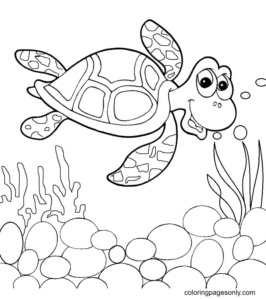 Nemo Sea Turtle Coloring Page