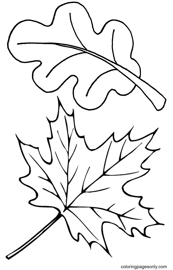 Print Fall Leaves Coloring Page
