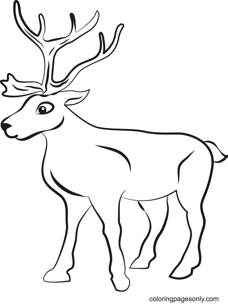 Printable Reindeer Coloring Page