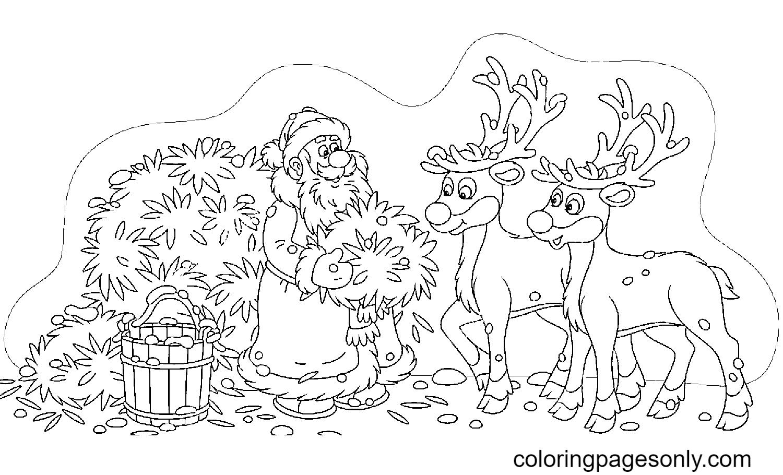 Santa Claus Feeding Reindeer Coloring Page