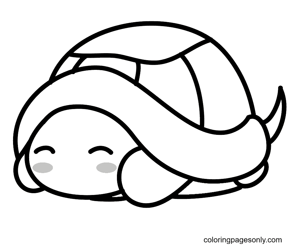 Tiny Turtle Coloring Page