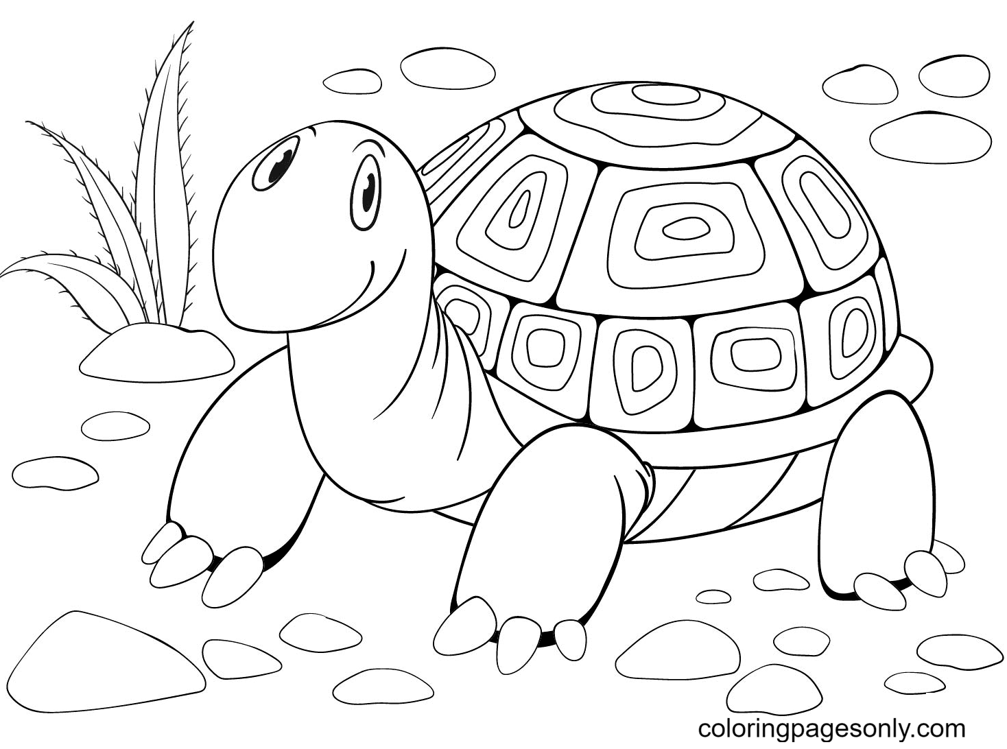 Turtle Free Coloring Page