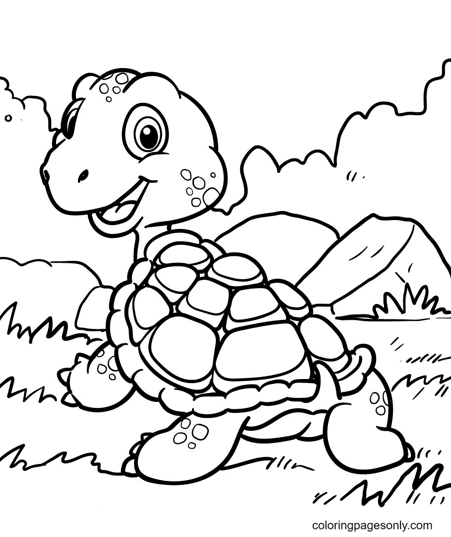 Turtle Loves Adventure Coloring Page