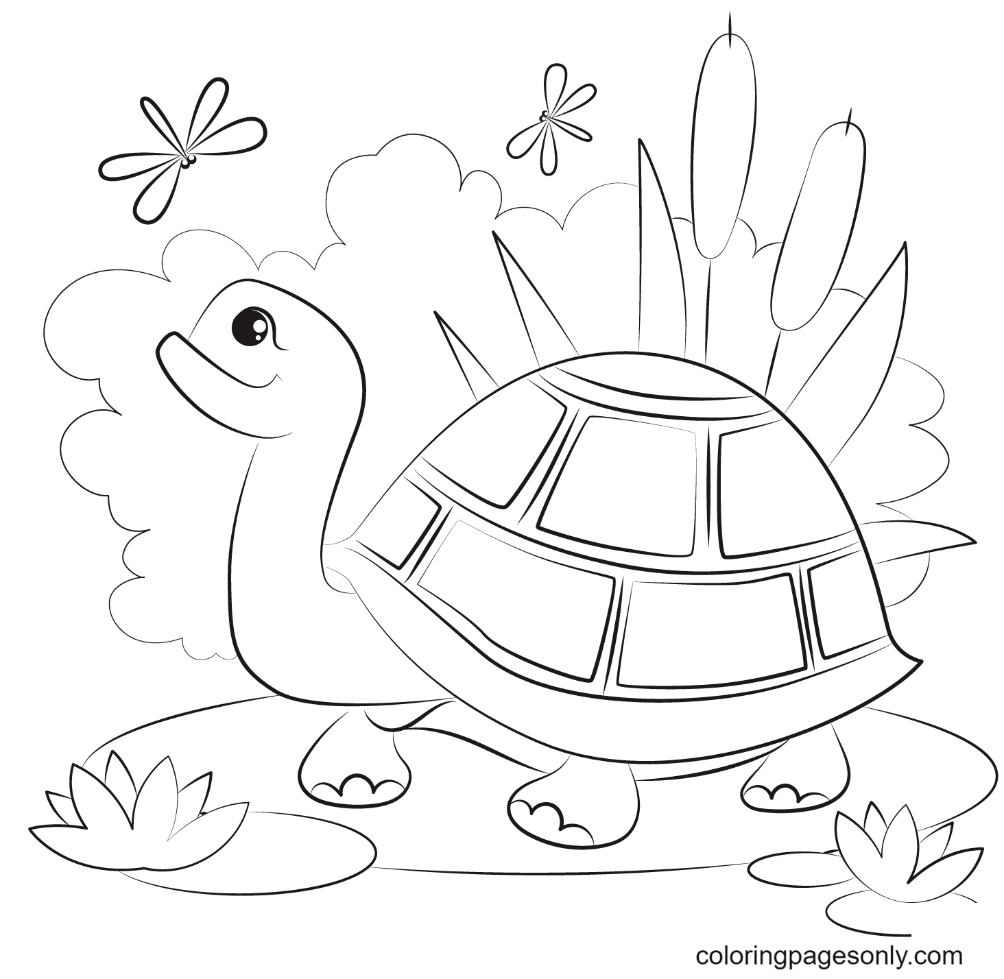 Turtle See Dragonflies Coloring Page