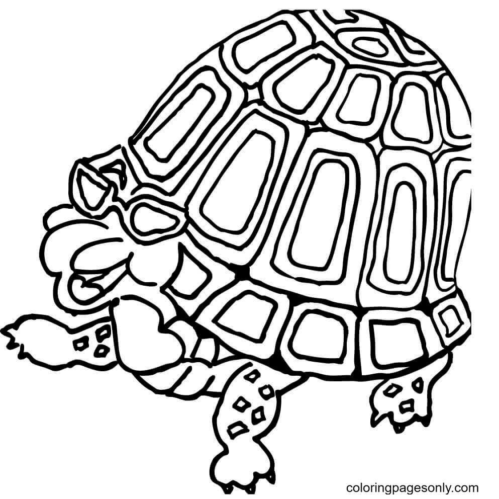 Turtle in Glasses Coloring Page